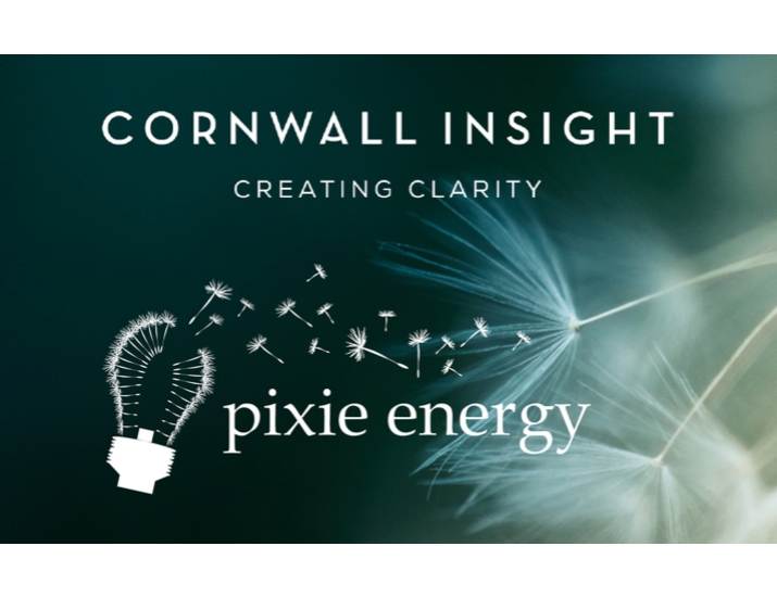 Pixie Energy and Cornwall Insight join forces to deliver lower cost, greener power to Norwich image
